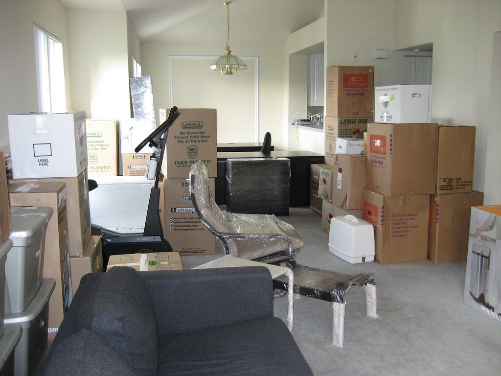 moving-day-success